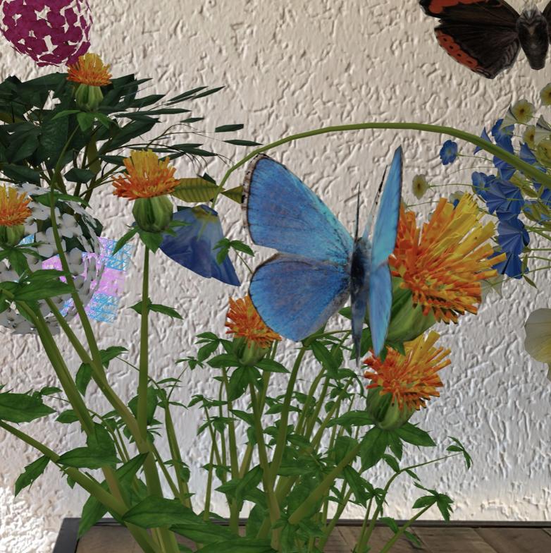 Rette die Schmetterlinge