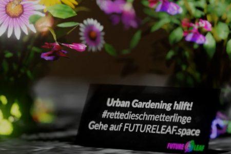 Urban Gardening Rettet die Schmetterlinge AR-Story Episode 2