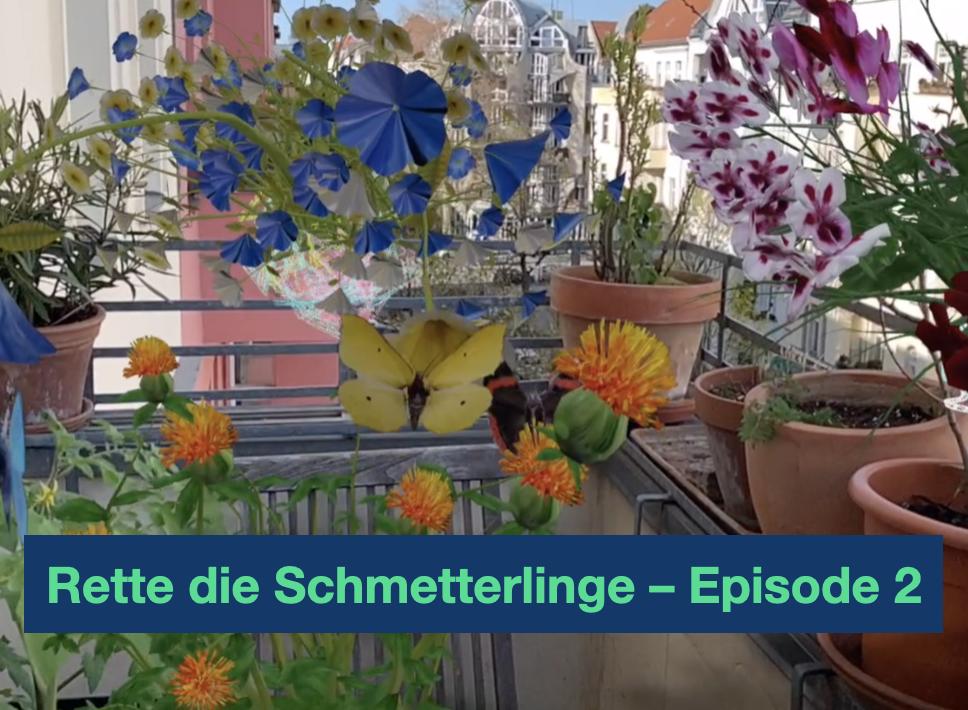 Rette die Schmetterlinge – Episode 2